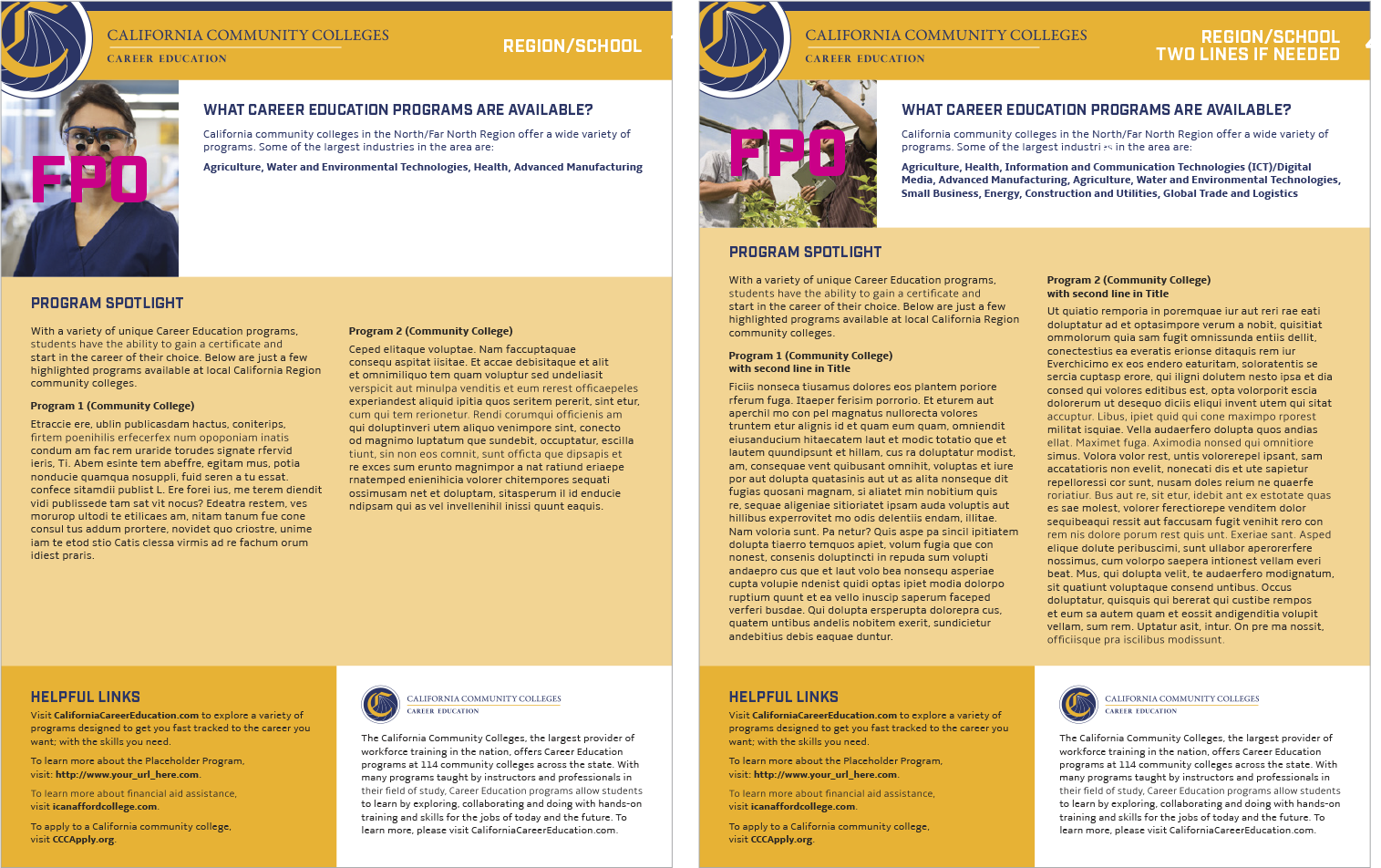 factsheet 4 Template